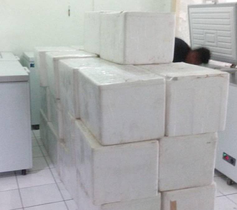 Supplier Durian Cimahi Bandung